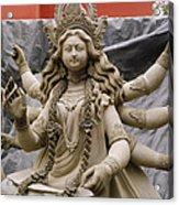 Queen Durga Acrylic Print by Shaun Higson