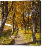 Quiet Parkway Acrylic Print