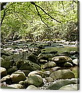 Quiet Place In The Smokies Acrylic Print