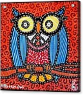Quilted Professor Owl Acrylic Print