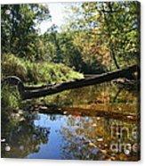 Quinnebaug Reflections  Acrylic Print