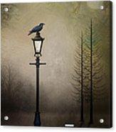 Quote The Raven Acrylic Print