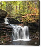R. B. Ricketts In The Changing Forest Acrylic Print