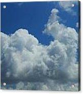 Rabbit Cloud Acrylic Print