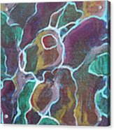Rabbock Acrylic Print