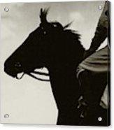 Race Horse Gallant Fox Acrylic Print