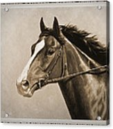 Race Horse Old Photo Fx Acrylic Print by Crista Forest