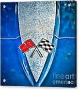 Race To Win Acrylic Print