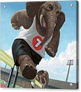 Racing Running Elephants In Athletic Stadium Acrylic Print by Martin Davey