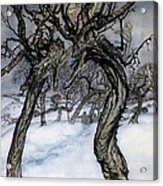 Rackham: Whisper Trees Acrylic Print
