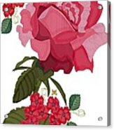 Rad Pink And Red Rose Acrylic Print