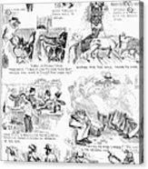 Railroading Cartoon, 1873 Acrylic Print