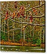 Rain At The Pumpie Acrylic Print