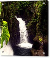 Rain Forest Grotto With 2 Waterfalls Acrylic Print