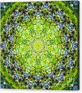 Lluvia Mandala Acrylic Print