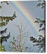 Rainbow 2 Acrylic Print