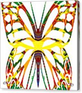 Rainbow Butterfly Abstract Nature Artwork Acrylic Print