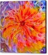 Rainbow Coronal Acrylic Print