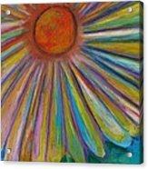 Rainbow Daisies Acrylic Print