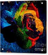 Rainbow Ecstasy Acrylic Print