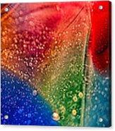Rainbow Fishtail Acrylic Print