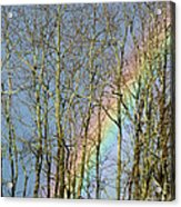 Rainbow Hiding Behind The Trees Acrylic Print