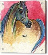 Rainbow Horse 2013 11 17 Acrylic Print