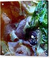 Rainbow Kelp Acrylic Print