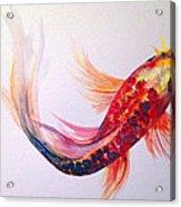 Rainbow Koi Acrylic Print