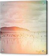 Rainbow - On A Wing And A Prayer Acrylic Print