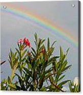 Rainbow Over Flower Acrylic Print