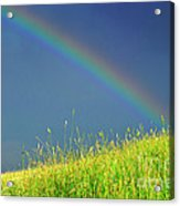 Rainbow Over Pasture Field Acrylic Print