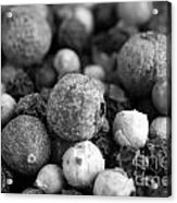 Rainbow Peppercorn Macro Black And White Acrylic Print