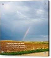 Rainbow Promise Acrylic Print