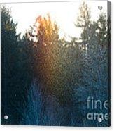 Rainbow Sparkles Acrylic Print