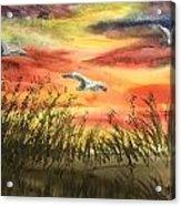 On Wind Of A Rainbow  Acrylic Print