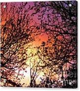 Rainbow Sunset Acrylic Print