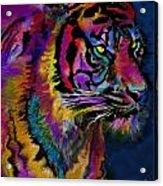 Rainbow Tiger Variant Acrylic Print
