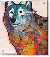 Rainbow Warrior - Alfa Wolf Acrylic Print