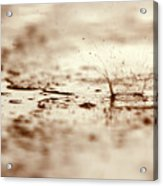 Raindrop Falling On The Street Acrylic Print