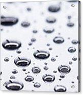 Raindrops Resting Acrylic Print