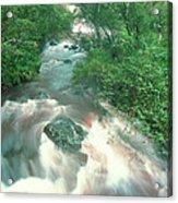 Rainforest Cascade Near Hana Maui Hawaii Acrylic Print