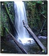 Rainforest Run Off Acrylic Print