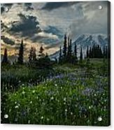 Rainier Abundance Of Flowers Acrylic Print