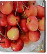 Rainier Cherries Acrylic Print