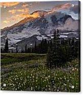 Rainier Meadows Splendor Acrylic Print