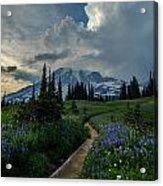 Rainier Meadows Thunder Skies Acrylic Print