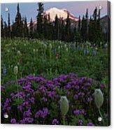 Rainier Pastel Dawn Acrylic Print