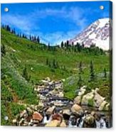 Rainier's Meadows Acrylic Print