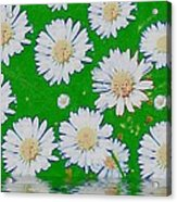 Raining White Flower Power Acrylic Print
